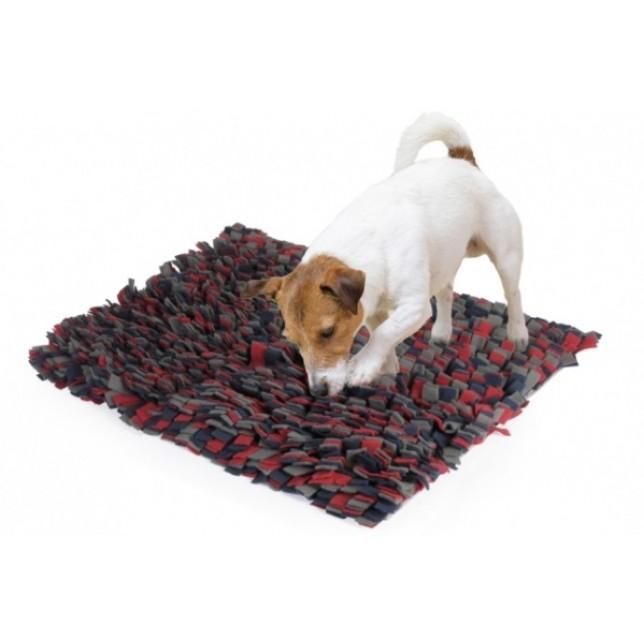 שטיח הרחה להחבאת חטיפים 50X60
